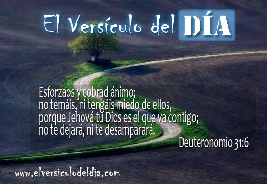 Versiculos De La Biblia De Animo: Fondos Versiculos Biblicos, Coleccion Imagenes Mensajes