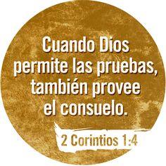 consuelo1