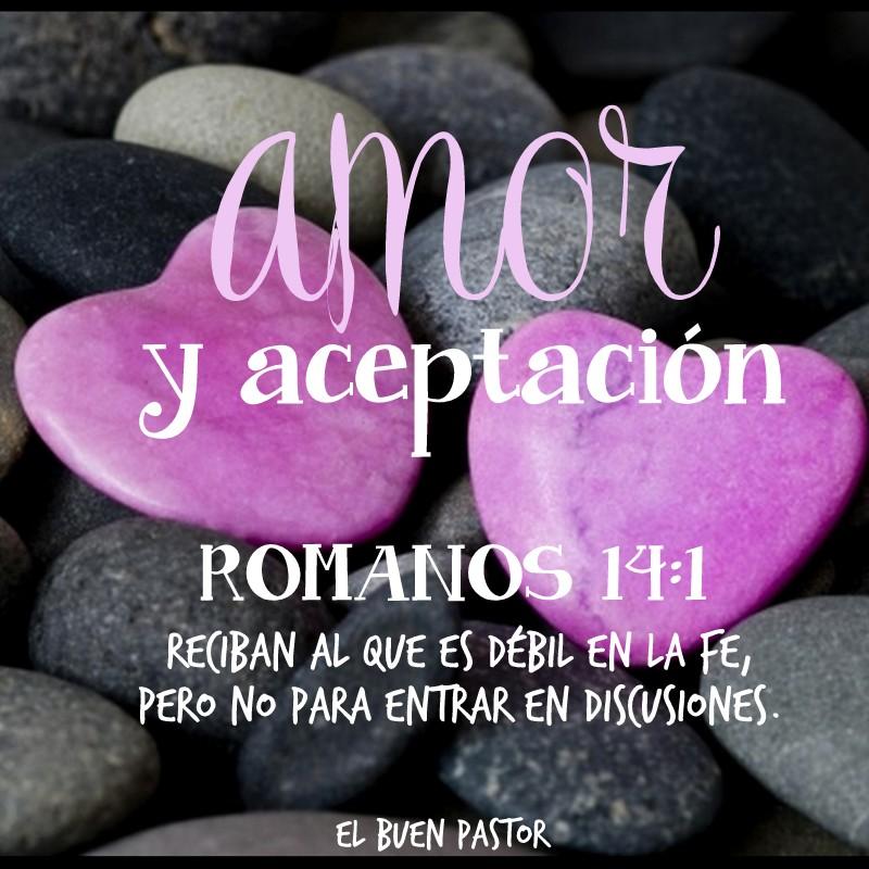 ROMANOS 14.1