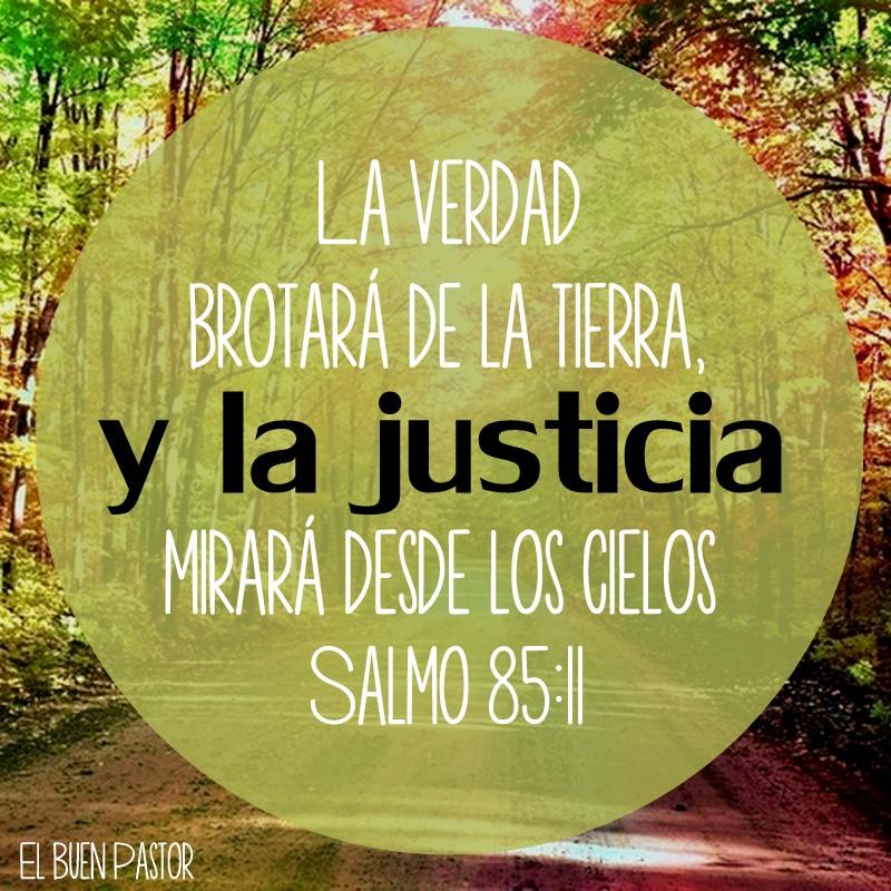 """""""La verdad brotará de la tierra, y la justicia Mirara desde los cielos"""".  Salmo 85:11"""
