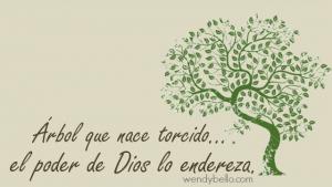 árbol q nacetorcido