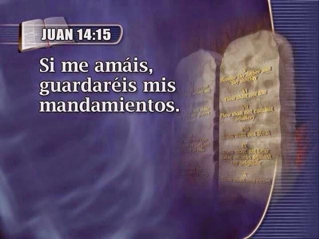 Juan 14-15-reflexiones cristianas