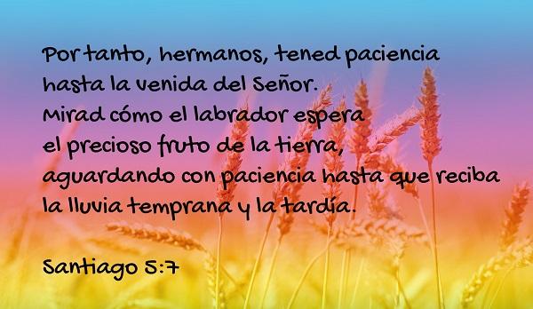 Santiago 5-7 Reflexiones Cristianas