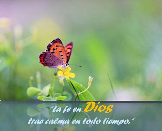 fe en Dios - Reflexiones cristianas