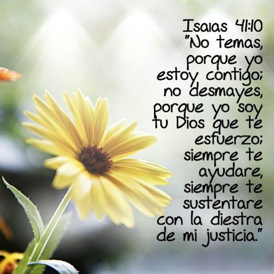 Isaías 41-10