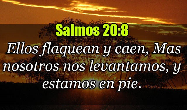 Salmos 20-8