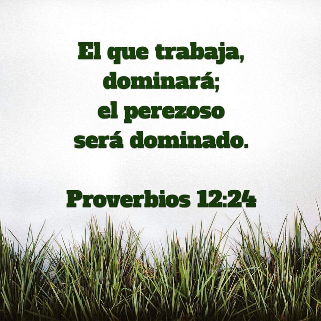 proverbios-12-24