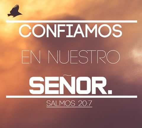 salmo-20-7